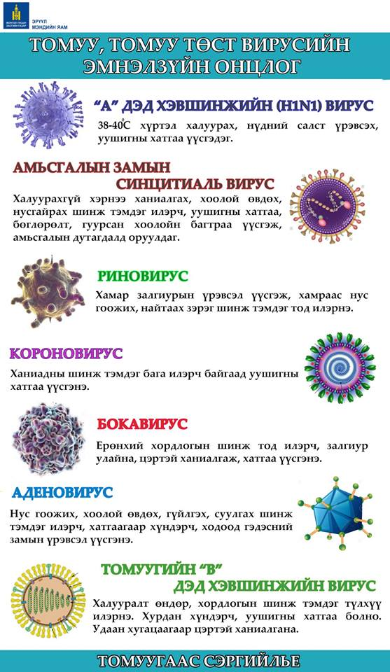 АНХААР: Томуу, томуу төст вирусийн эмнэлзүйн онцлог