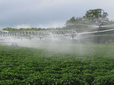 ХАА-н усалгааны систем