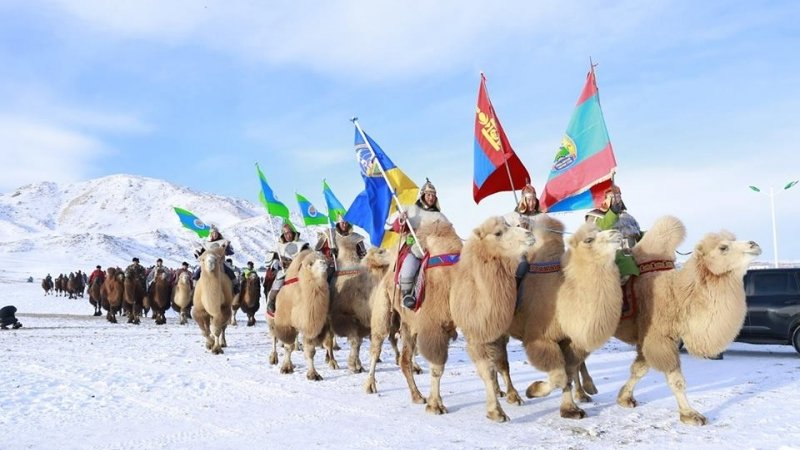 Thousand Camel Festival to be held in Umnugovi