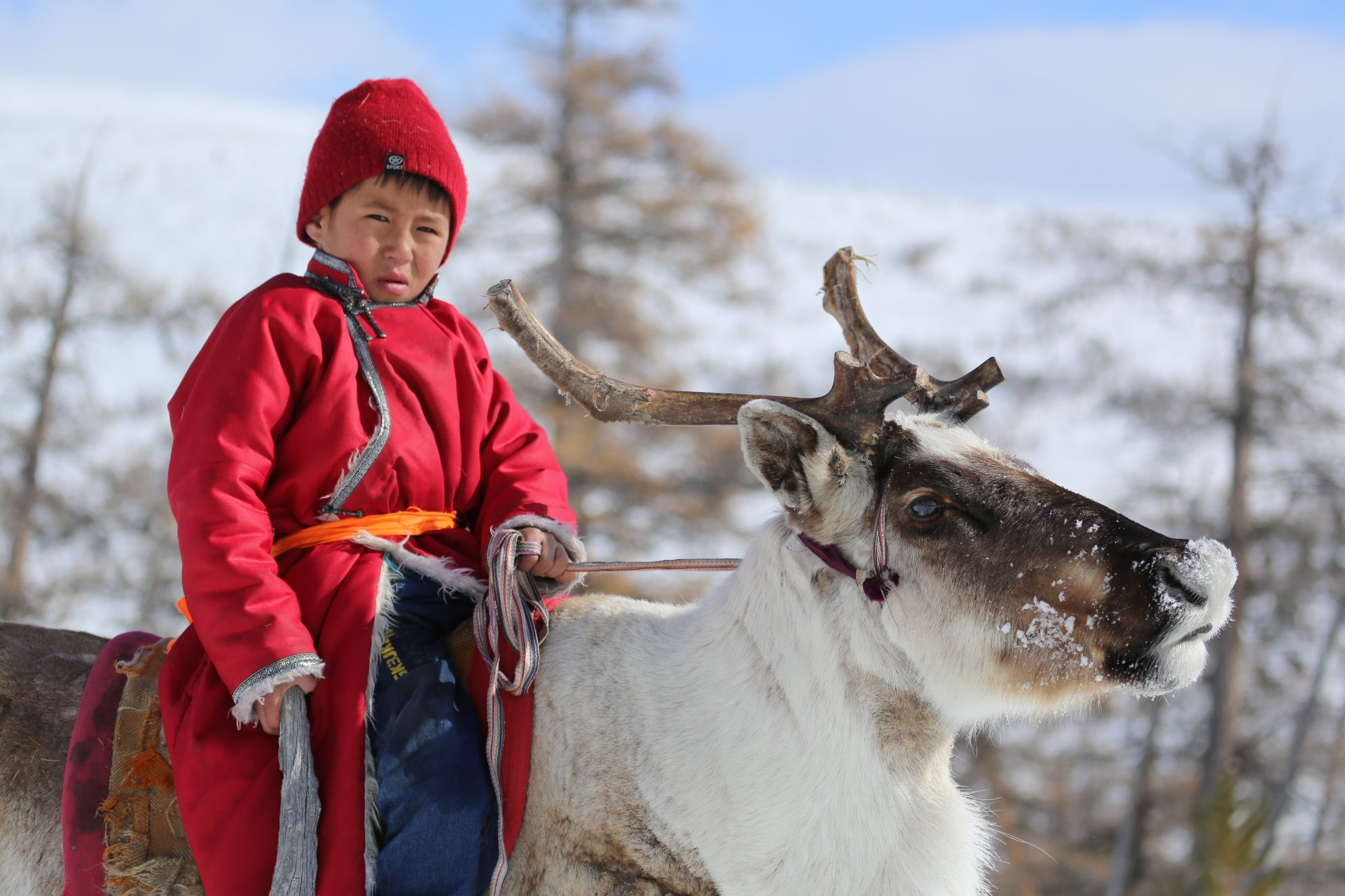 MONGOLIA ACHIEVES A MILESTONE IN NATIONAL ADAPTATION PLANNING