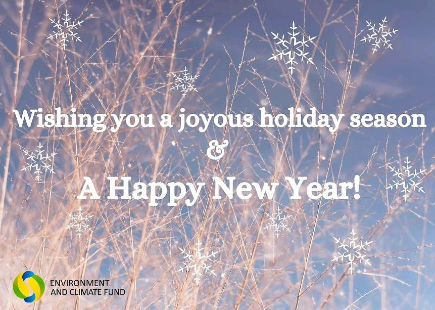 May this year bring happiness, new goals, achievements in your life. Happy new year!