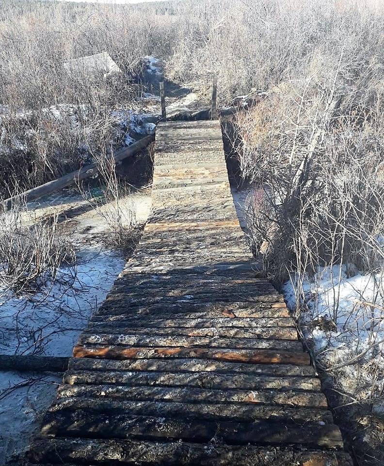 Нийслэлийн хойд чиглэлд анхны алхалтын зам нээгджээ