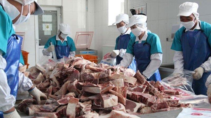 Нийслэлчүүдийн ирэх хаврын хэрэглээнд зориулж 20,000 тонн мах нөөцөлнө