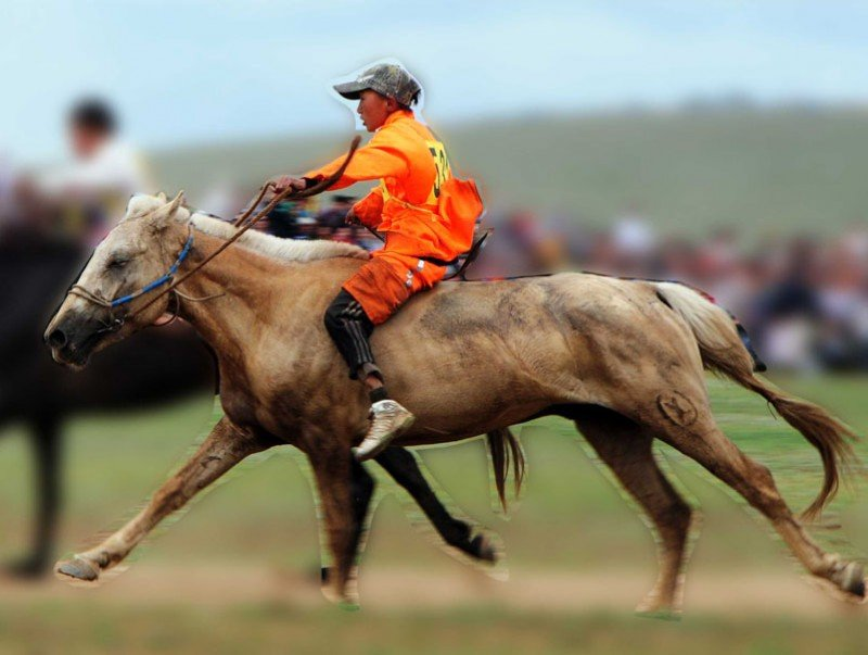 НҮБ: Хурдан морь унаач хүүхдүүдийн талаар мэдэгдэл гаргалаа