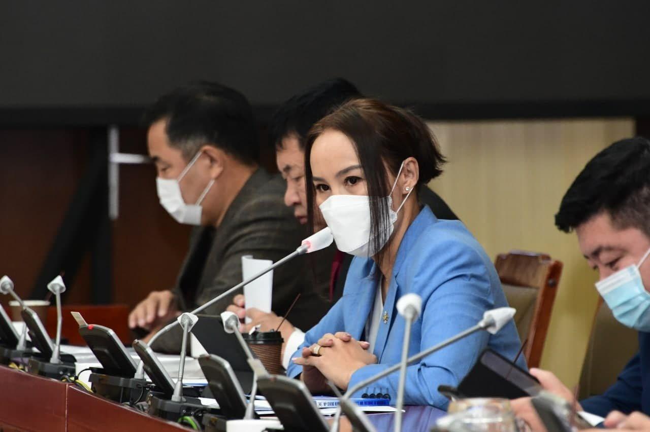 Ц.Мөнхцэцэг: Иргэний болон УТ-ийн эрхийн тухай ОУ-ын пактын хэрэгжилт Монгол Улсад хангалтгүй байна