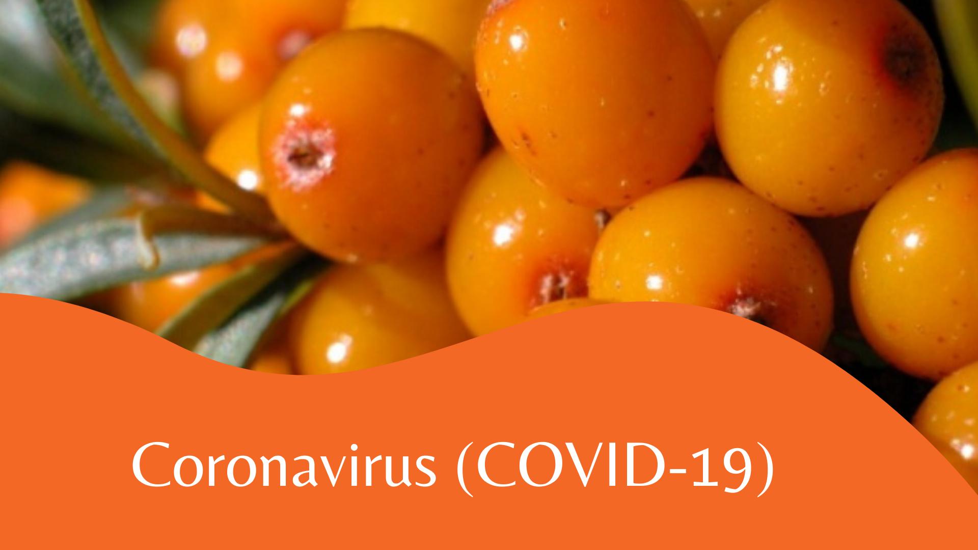 БНСУ-ын эрдэмтэд чацарганаас Coronavirus (COVID-19)-ийг дарангуйлдаг бодис илрүүлжээ