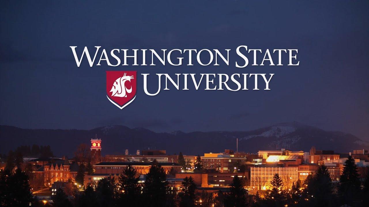 Вашингтон Мужийн Их Сургуулийн Тэтгэлэг