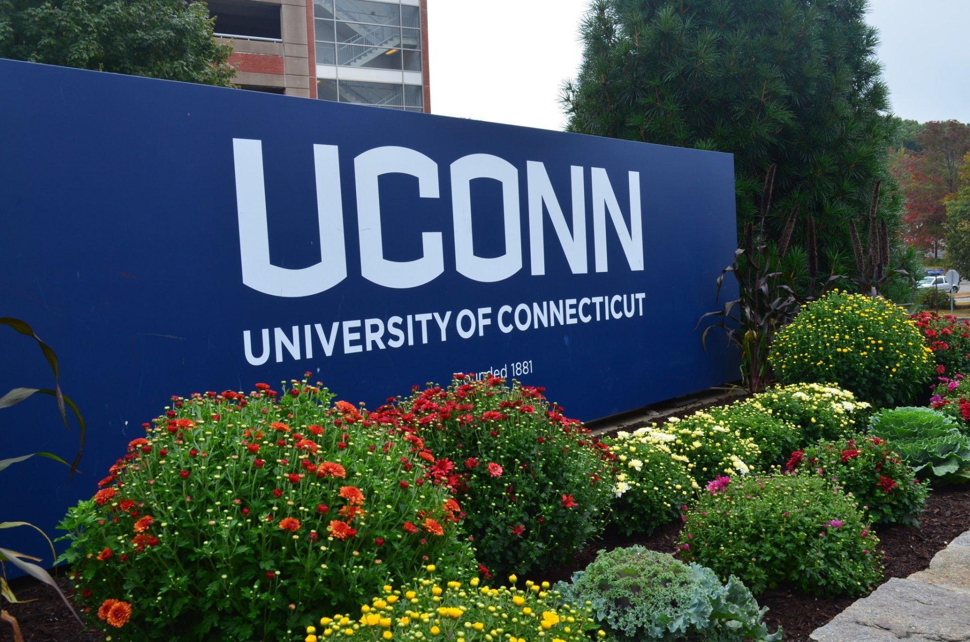 Коннектикутын Их Сургуулийн Тэтгэлэг