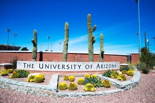 Аризонагийн Их Сургуулийн тэтгэлэг