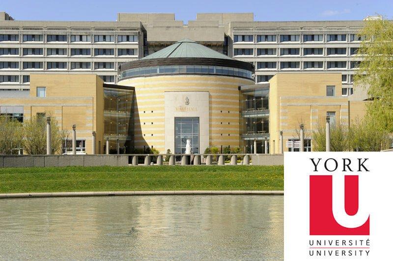 Йоркийн Их Сургуулийн Олон Улсын Оюутнуудад зориулсан тэтгэлэг