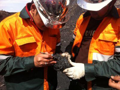 Coal Analyze
