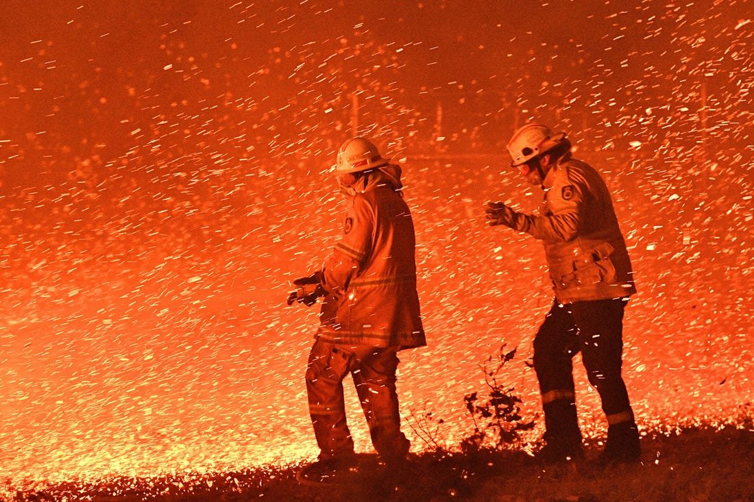 Австрали улсад гарсан ой хээрийн түймэр ойрын хэдэн сардаа намжих шинжгүй байна