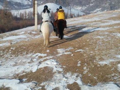 Horse riding in the Terelj National park