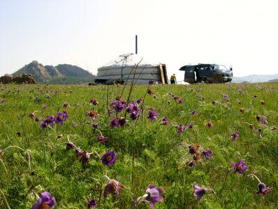 Visiting nomadic family