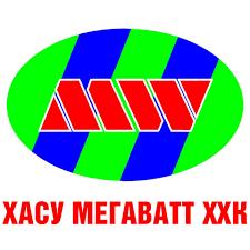 Khasu Megawatt LLC