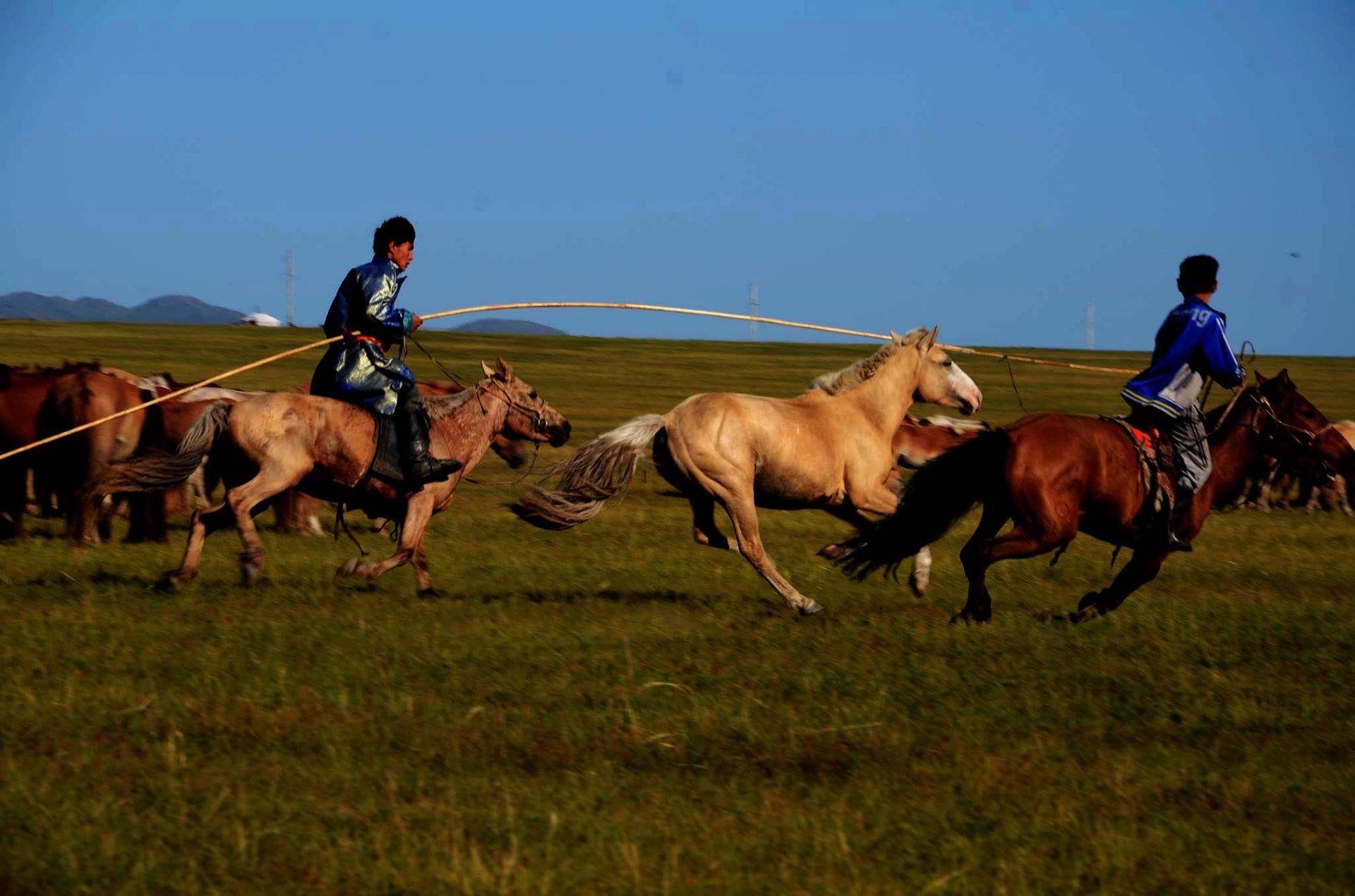 12 Reasons to visit Mongolia