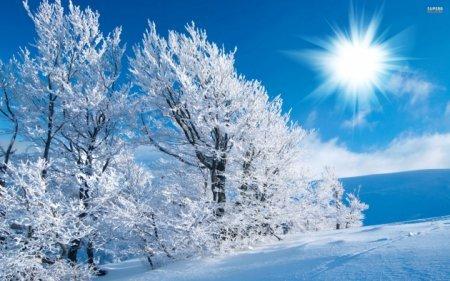 ЦАГ АГААР: Улаанбаатарт шөнөдөө ялимгүй цас орно