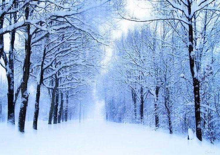 ЦАГ АГААР: Ихэнх нутгаар хүйтний эрч суларна