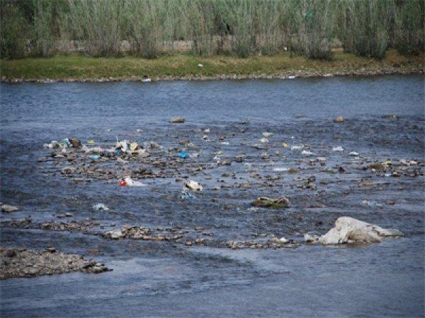 Туул голын усанд хүн, мал, орчинд аюултай 15 хорт элемент агуулагдаж байгааг тогтоожээ