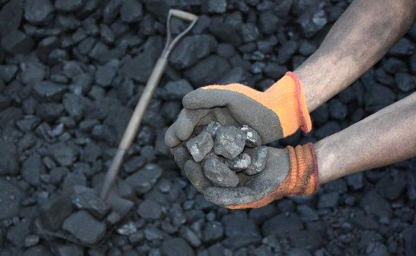 Түүхий нүүрсний хэрэглээнд хяналт шалгалт хийлээ