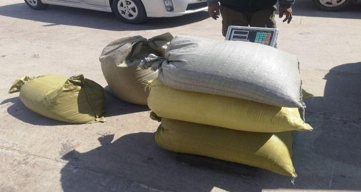 Ачааны машиндаа 110 кг дэрвэгэр жиргэрүү нууж хил нэвтрүүлэхийг завджээ