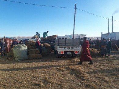 Улсын нөөцөөс 12,5 тонн хивэг,12.0 тонн хорголжин тэжээл 2500 боодол өвс ирлээ.