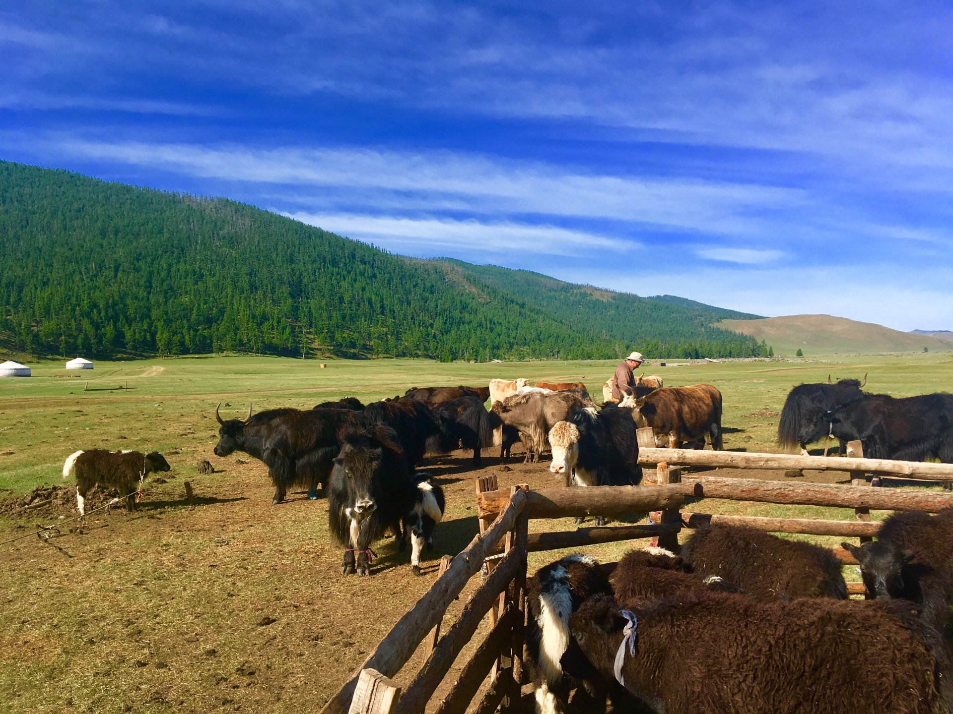 Geography of Mongolia