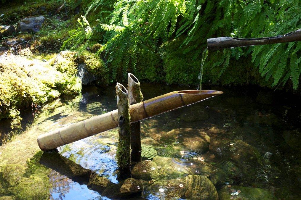 Япон усны эмчилгээ гэж юу вэ?