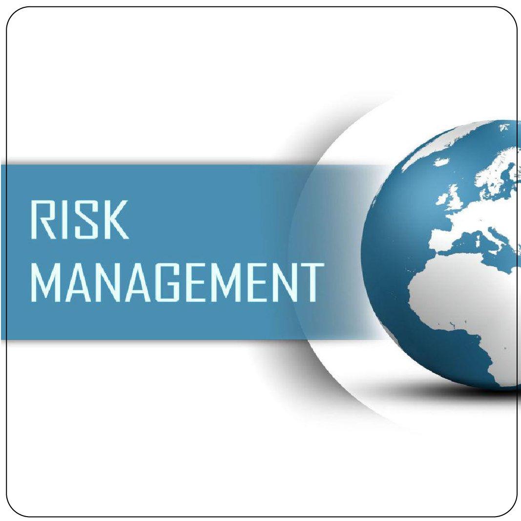 Төслийн эрсдэлийн менежмент