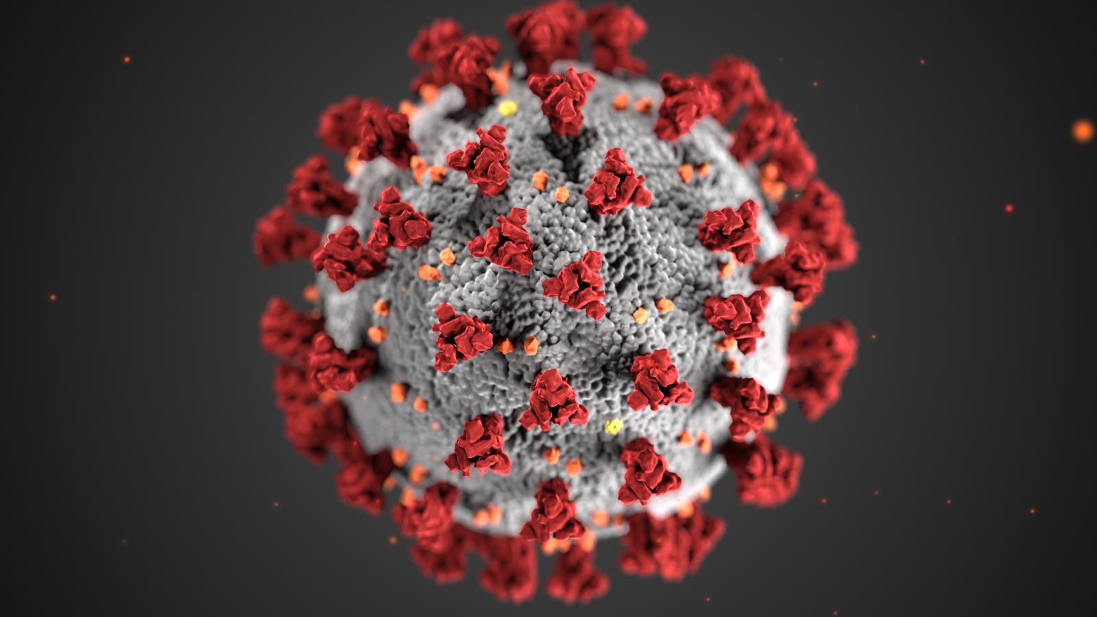 Вакцины бүрэн тунгаа хийлгэсэн хүмүүст ямар боломж нээгдэх вэ.