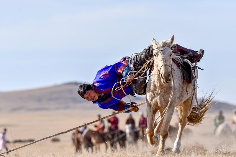 Steppe horse festival: A True show of horsemanship