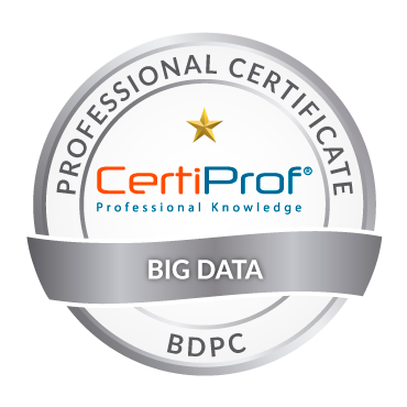 Big Data Professional Certificate Хөтөлбөрийн сургалт