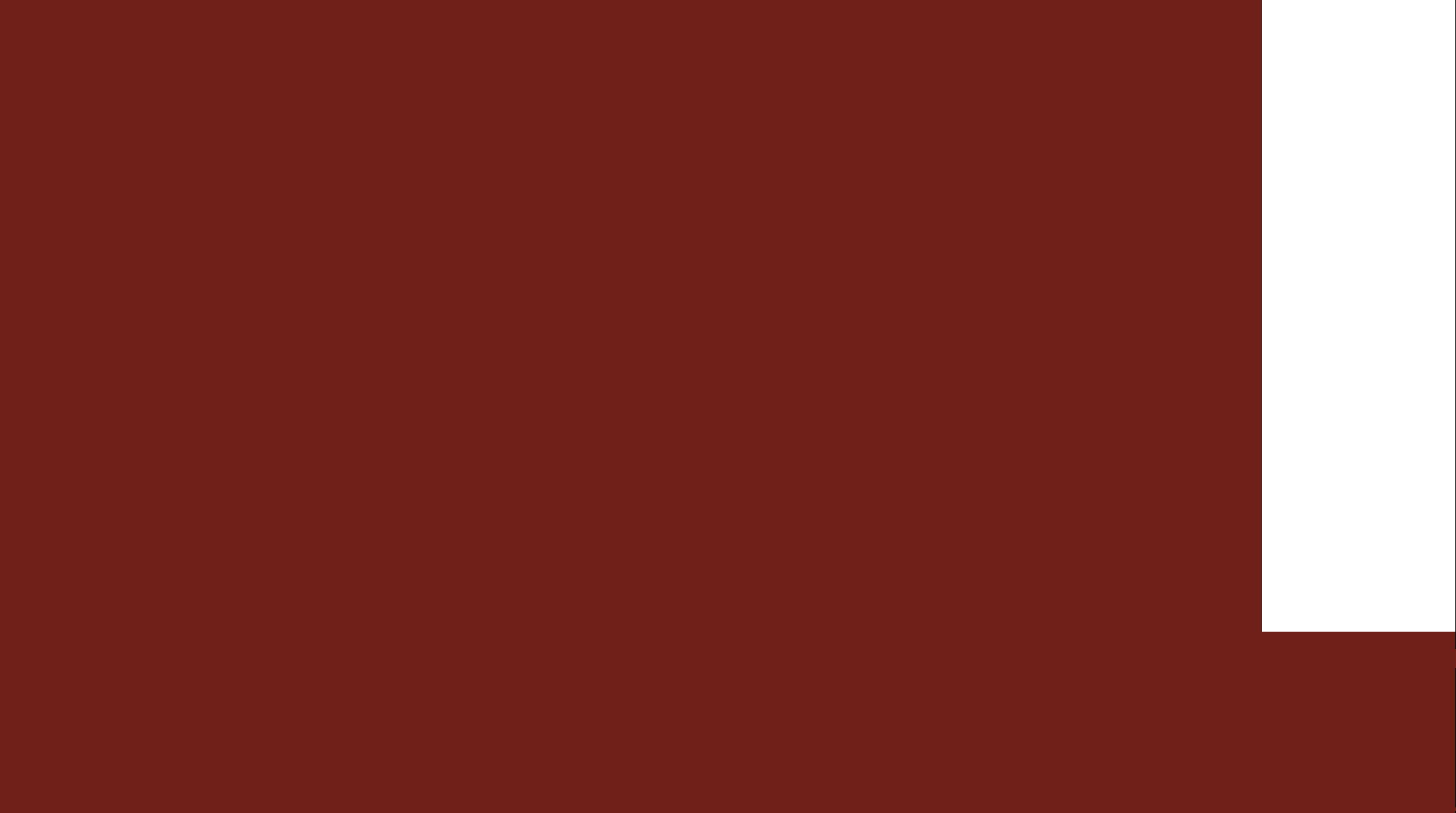 Tavantolgoi