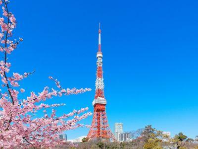Токио цамхаг
