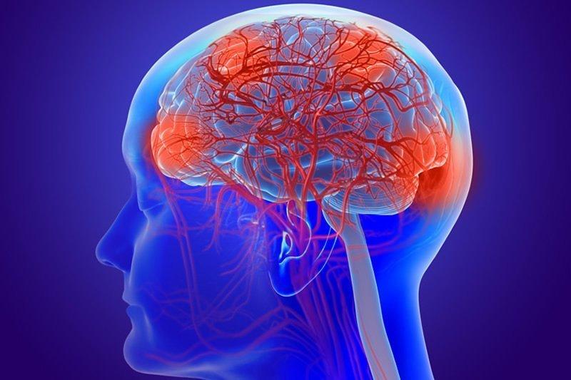 Тархины цусан хангамжийн дутагдал