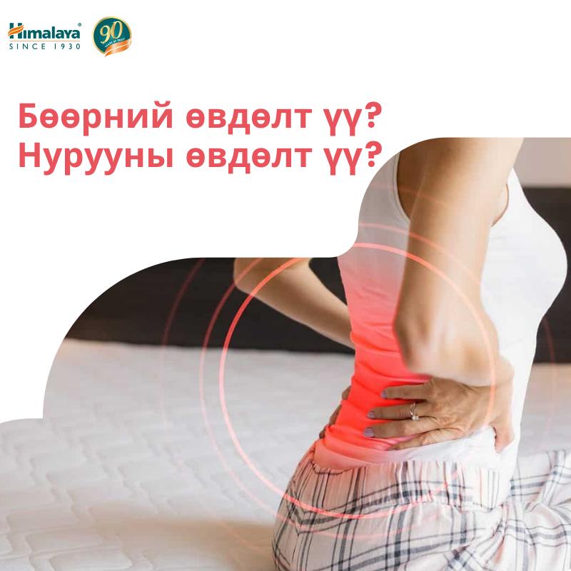 Бөөрний өвдөлт үү эсвэл  нурууны өвдөлт үү? Хэрхэн ялгах вэ?