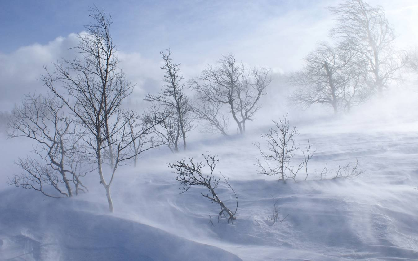 ОБЕГ: Маргааш, нөгөөдрөөс ихэнх нутгаар цас орж хүйтрэнэ