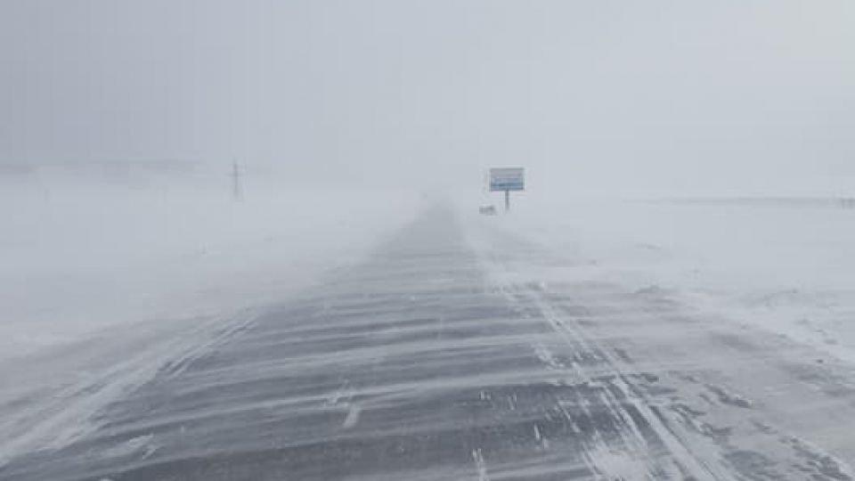 УЦУОШГ: Ихэнх нутгаар цас орж, цасан шуурга шуурна