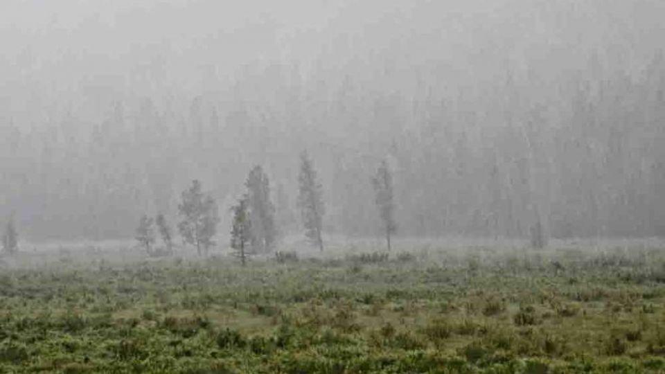 ОБЕГ: Нийт нутгаар борооших тул үер, усны аюулаас сэрэмжлүүлж байна